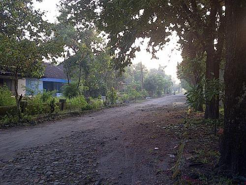 Sederetan rumah di sebelah kiri ini dulu rumah2 bagus. Seingat saya di deretan inilah rumahnya Endos, Siwo, Wijaya, Dewi (Ariek) ..terus paling agak ujung adalah rumah paklik Kayat, paman saya ...ada di foto bawah ini ...