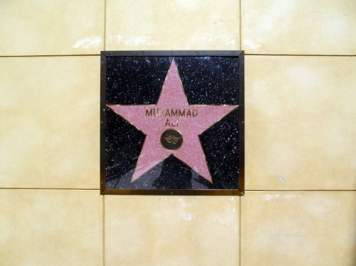 Muhammad Ali-The only star on the wall